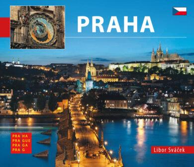 Praha / kniha L.Sváček - malý  česky(9788073391096)