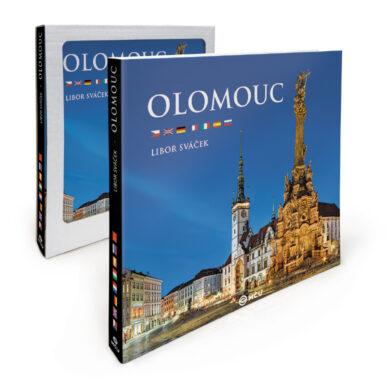 Olomouc / kniha L. Sváček(9788073392345)